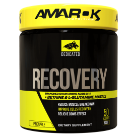 BCAA + RECOVERY 500G